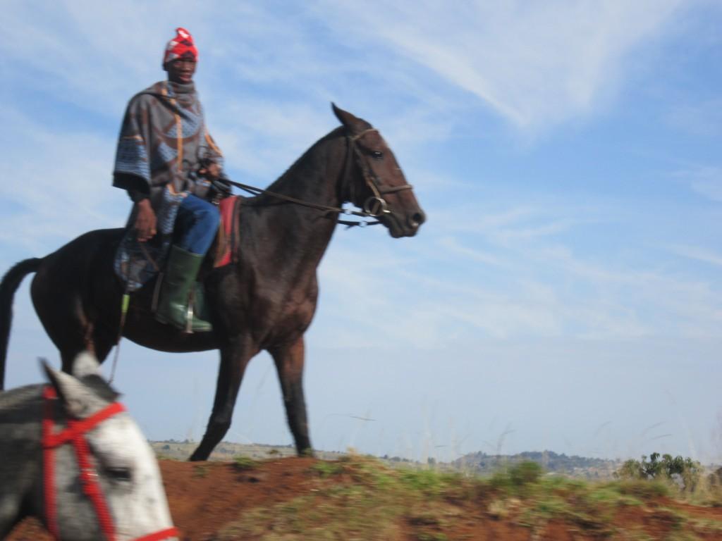 A BaSotho on Horseback